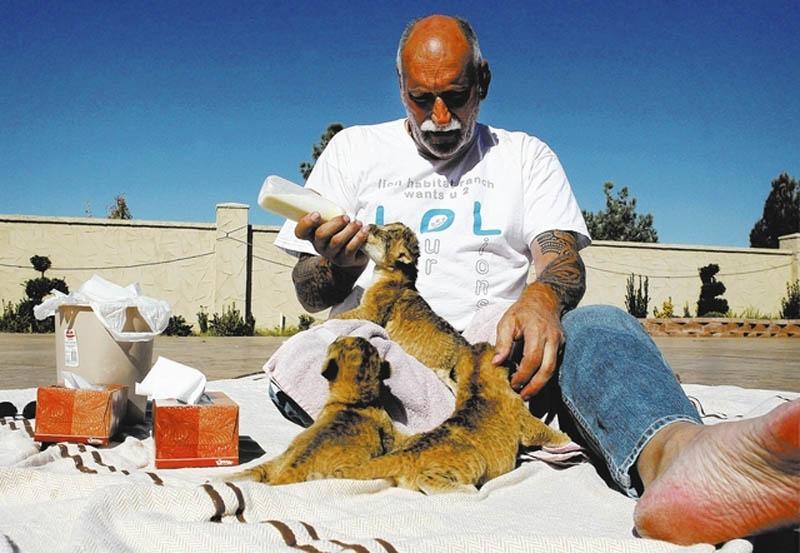 Lion Habitat Ranch Las Vegas